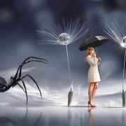 Foto: Fantasie-Welt, Frau mit Regenschirm, überdimensional schwarze Spinne, angeblich nicht schutzbedürftige Personenkreise