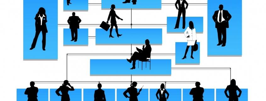 Grafik: Hierarchie in Unternehmen
